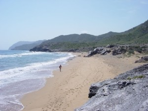 Calblanque is an area of exceptional beauty and tranquility with fine golden, sandy beaches and clear, sparkling waters